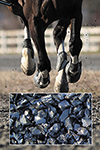 horse arena rubber 2